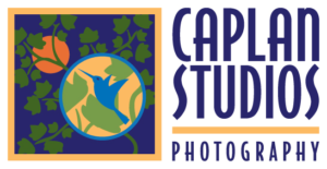 Caplan Studios Photography